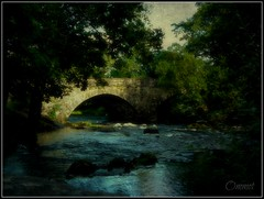 Skelwith Bridge (Steve.T.) Tags: bridge texture beauty river scenery stream fuji lakedistrict scenic cumbria stonewall beautyspot textured skelwithbridge hs10 cumbrianway ommot