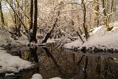 Snow - Bonn-Ippendorf