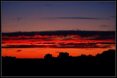 The View (c.aalice) Tags: trees sunset sky ontario canada color colour slr nature clouds landscape nikon christine dslr mississauga mcpherson