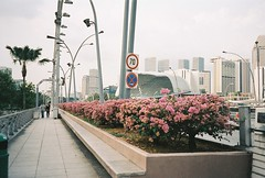 (yttria.ariwahjoedi) Tags: road street camera trip vacation film architecture point singapore asia shoot shot riva minolta zoom first 150 transportation esplanade 2012