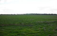1307 Kooba Road, Whitton NSW