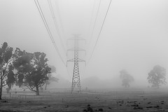 The Fog is Electric (red snapper 205) Tags: fog mist morning dawn adelaidehills landscape power electricity electric blackandwhite bw monochrome contrast silhouette shadow explore