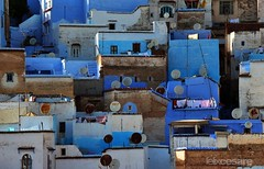 The Shades of Blue - Chefchaouen Houses. (Photographing_The_World) Tags: morocco marokk travel travelphotography arabic africa muslimcountry culture wanderlust explore people northafrica moroccan moroccanculture moroccancolors moroccancolours moroccanpeople africanpeople discovermorocco exploremorocco marrakesh marrakech fes fez agadir asilah essaouira merzouga sahara maroc chefchaouen colors travelphotos arabicculture arabicpeople travelblog muslimpeople muslimculture diversity multicultural locals locallife moroccanlifestyle moroccanlife chefchaouenhouses shadesofblue blueshades