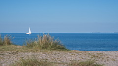 like a postcard from the baltic sea (malp007) Tags: ostsee meer balticsea r insel iland strand beach ufer segelboot sailship gras sand sonnig