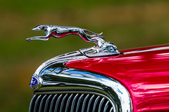 out for a run (Explore) (epsmith2421) Tags: ardmorecarshow2016 lizsmith ford red hoodornament chrome color