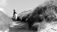 On the way (patrick_milan) Tags: noiretblanc blackandwhite noir blanc monochrome nb bw black white street rue people personne gens streetview fminin femal femme woman women girl fille belle beautiful candide horse cheval cavalier cavalire sand dune nature