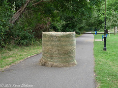 Yeah, very funny - now put it back with the others! (karenblakeman) Tags: caversham uk hillsmeadow haybale footpath august 2016