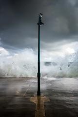 Fracas -St Malo- (Lollivier Stphane) Tags: mare grande saint malo vagues tempete storm france bretagne ille et vilaine explore nikon d3200 lampadaire mouette sea mer nuage clouds