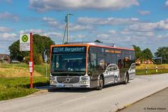 VHH 1336   Hamburg, Neuengammer Hauptdeich (torbensimon) Tags: vhh verkehrsbetriebehamburgholsteingmbh hamburg holstein vierundmarschlanden elbdeich deich hauptdeich elbe mercedesbenz citarolem 1336 linie 227 bfbergedorf bus linienbus schnellbus stadtbus evobus
