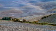 Tuscany lines (Karmen Smolnikar) Tags: autumn italy fall colors lines colours soil clay tuscany crete fields toscana vlue colurs senesi