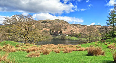 Loughrigg Tarn (AbhijeetVardhan) Tags: trees panorama lake grass sunshine nikon natural district cumbria sns tarn fell hdr windermere skelwithbridge loughrigg d90