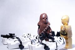 "#316/366 (bobsfever) Tags: toys star nikon funny with mini clones stormtrooper figures challenge ""mini wars"" toys"" ""bad ""robert set"" ""fun ass"" ""star ""plastic ""funny ""lego figures"" d3100 3662012 stormtrooper"" mcgoldrick"" bobsfever"