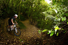 jungle_gym (Wozza_NZ) Tags: newzealand bike bush mountainbike fisheye shore cycle wellington 8mm norco junglegym lowerhutt wainuiomata switchback singletrack sifting wtp samyang