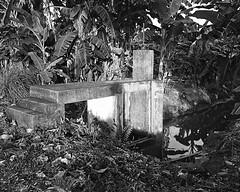 Watergate (<Pirate>) Tags: nature water blackwhite fishing gate village graphic large malaysia 4x5 crown format kuala penang pulau schneider balik sungai kreuznach burung 13547