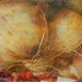Onions - Textures: Lenabem Anna and Jennyw47 - Thanks