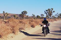 Triumph (Ivan Darko) Tags: california canon desert joshuatree triumph motorcycle