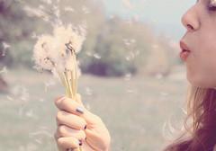 making wishes (darlingest of darlings) Tags: girl pastels wishes summertime secrets pursedlips tumblr wishingflower