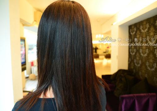 bon bon hair_033.jpg