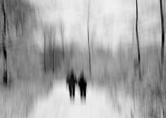 WinterWaldWanderung (Werner Schnell Images (2.stream)) Tags: wood winter forest walking woods tour walk explore wald werner spaziergang ws schnell explored wernerschnellallrightsreserved