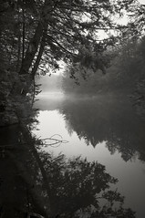 Foggy Pond (frntprchprss) Tags: trees blackandwhite water fog pond woods massachusetts easthampton blackwhitephotos nonotuckpark fixedshadows jamesgehrt