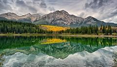 Pretty Patricia (Phil's Pixels) Tags: autumn canada mountains fall reflections jasper alberta pyramidpeak patricialake bestevergoldenartists