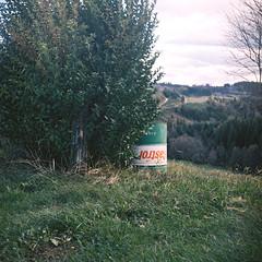 Ballade//Greniecq (Molle William) Tags: 120 tlr forest kodak sem medium stroll portra semflex moyenformat strol blinkagain