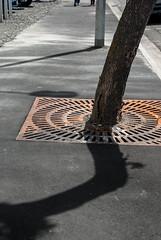 A Little Bent (Jocey K) Tags: newzealand christchurch rust shadows nz poles footpath treetruck