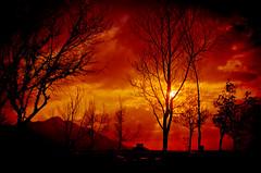 _DSC2649_1 (nabilelsherif) Tags: sky sun clouds nikon nikkor 18105mm d5100 bestcapturesaoi mygearandme mygearandmepremium