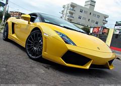 Lamborghini Gallardo LP560-4 Bicolore (Igor Herculano) Tags: lamborghini gallardo bicolore lp5604