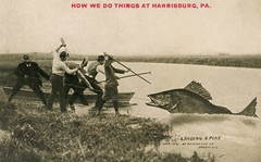 Landing a PikeHow We Do Things at Harrisburg, Pa. (Alan Mays) Tags: ephemera postcards talltalepostcards paper printed talltales exaggerations oversized giant fantasy mammoth huge pikes walleyes fish fishing boats fishermen men humor humorous funny comic harrisburg pa dauphincounty pennsylvania 1910 1910s antique old vintage johnson asjohnsonjr alfredstanleyjohnsonjr alfredstanleyjohnson waupun wi wisc wisconsin postcardpublishers