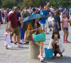 Asian tourist umbrella (AbdelHadef) Tags: umbrella asian tourist parapluie asiatique touriste