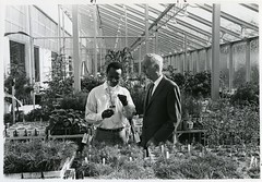 Professor Paul Kramer Talks with School of Forestry Graduate Student Patrick Tesha in the Phytotron, ca. March 1970 (Duke University Archives) Tags: phytotron greenhouse science botany research pine faculty graduatestudent dukeuniversity westcampus durham nc plants botanist