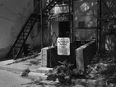 Authorized (geowelch) Tags: downtown toronto urbanfragments alley blackwhite sign urbandecay panasoniclumixgx1 panasoniclumixgvario1232mm3556