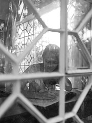 Good Morning 65 (Cadu Dias) Tags: luz natural light manhã good morning nikon df 35 35mm pb bn bw grain book preto branco brazil brazilian brasil cama bed cadu dias cadudias cadupdias day nikondf female feminilidade grão woman girl mulher hot prime lens portrait retrato monochrome people ritratti monocromático bedroom bom dia window janela