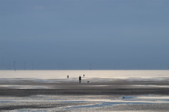 Three men and a dog (Allan Rostron) Tags: liverpool antonygormley beaches sand crosby anotherplace art sculpture windturbines rivermersey estuaries lancashire