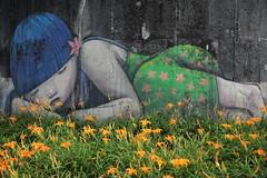 IMG_0487 (BrellLi) Tags: 台灣 taiwan 花蓮 hualien 富里 fuli 六十 六十石山 金針花 orangedaylily 花 flora 戶外 outdoors canon 6d canon6d 壁畫 mural sigma24105mmart