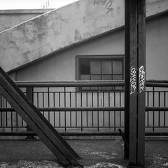 Toronto Film Shooters Meetup - Summer 2016 (KevinCollins00) Tags: 120film 120love 6x6 acros100 analog analoginthewild analogphotography asa100 believeinfilm blackandwhite buyfilmnotmegapixels bw ei400 enjoyfilm film filmcommunity filmfeed filmisalive filmisnotdead filmphotographic filmphotography filmsnotdead fuji fujifilm grainisgood ishootfilm istillshootfilm keepfilmalive mat124 mediumformat neopan shootfilm shotonfilm square staybrokeshootfilm tfsm theanalogueproject yashica yashicamat toronto ontario canada