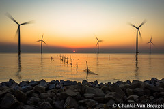 Zonsondergang (Chantal van Breugel) Tags: landschap zonsondergang ijselmeer de dijk windmolens espel flevoland noordoostpolder canon5dmark111 canon1635