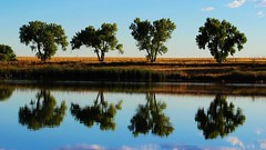 Lake Ladora (Circled Thrice) Tags: lakeladora lake pond water wetland trees reflection rockymountainarsenal nationalwildliferefuge outdoors outside serene commercecity aurora colorado co canon eos rebel t3i sigma landscape