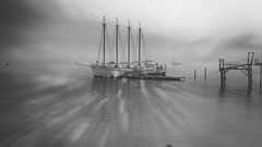New Dawn in Black and White (Shannonsong) Tags: maine barharbor monotone mono monochrome ocean dawnmorning texture toto texturrebytoto shore boat ship seascape