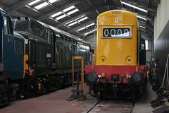 IMG_8435 (D9022) Tags: gloucesterwarwickshirerailway toddington 47376 freightliner gloucestershire 7903 d6948 37248 37215 35006 peninsular oriental sn co royal merchant navy class 4270 foremarke hall d8137 1693 d6036