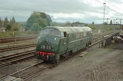 "D821 ""Greyhound"" - Kidderminster (GreenHoover) Tags: severnvalleyrailway svr svrdiesel dieselgala1999 class42 warship dieselhydraulic d821 d821greyhound greyhound kidderminster diesellocomotive dieselloco"
