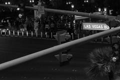 lasvegaslbvd (Purple Cow Pictures) Tags: lasvegas vegas sincity travel night photography streetphotography urbanlife strip