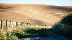 Looking Back (John Westrock) Tags: colfax washington road depthoffield landscape rural farmfield shadows clearsky canoneos5dmarkiii canon135mmf2lusm