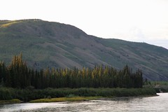 Yukon River Sunrise (demeeschter) Tags: canada yukon territory klondike highway lake mountain scenery landscape nature wildlife fire forest river minto resort bald eagle dawn sunrise