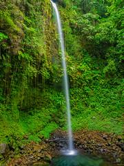 Salton Waterfalls, Dominica (m.gallenkamp) Tags: waterfalls dominica saltonwaterfalls caribbean caribbeannature rainforest green nature beautifulscenery beautifullandscapes beautifulnature