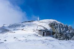 Harry_30820,,,,,,,,,,,,,,,,,,Hehuan Mountain,Taroko National Park,Snow,Winter (HarryTaiwan) Tags:                  hehuanmountain tarokonationalpark snow winter mountain     harryhuang   taiwan nikon d800 hgf78354ms35hinetnet adobergb