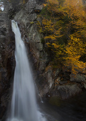 Glen Ellis Falls, NH (capers66) Tags: waterfalls nh newengland newhampshire nature water canon5dmarkii autumn fall
