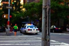 NYPD Macro (Ellis Mitchell) Tags: camera nyc usa ny newyork macro tree lamp america canon buildings lights crossing unitedstates bokeh walk streetphotography nypd slowshutter canoneos canoneos550d