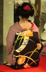 Maiko, Fukukimi, at Kyoto city in Japan:  (Nullumayulife) Tags: red orange woman white black cute girl beautiful japan female asian japanese kyoto purple traditional young violet exotic maiko geiko geisha kawaii  belle  nippon kimono obi japon giappone nihon 2012   japao  japons       japanisch   japonaise      japanishe fukukimi